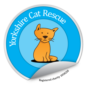 yorkshire_cat_rescue